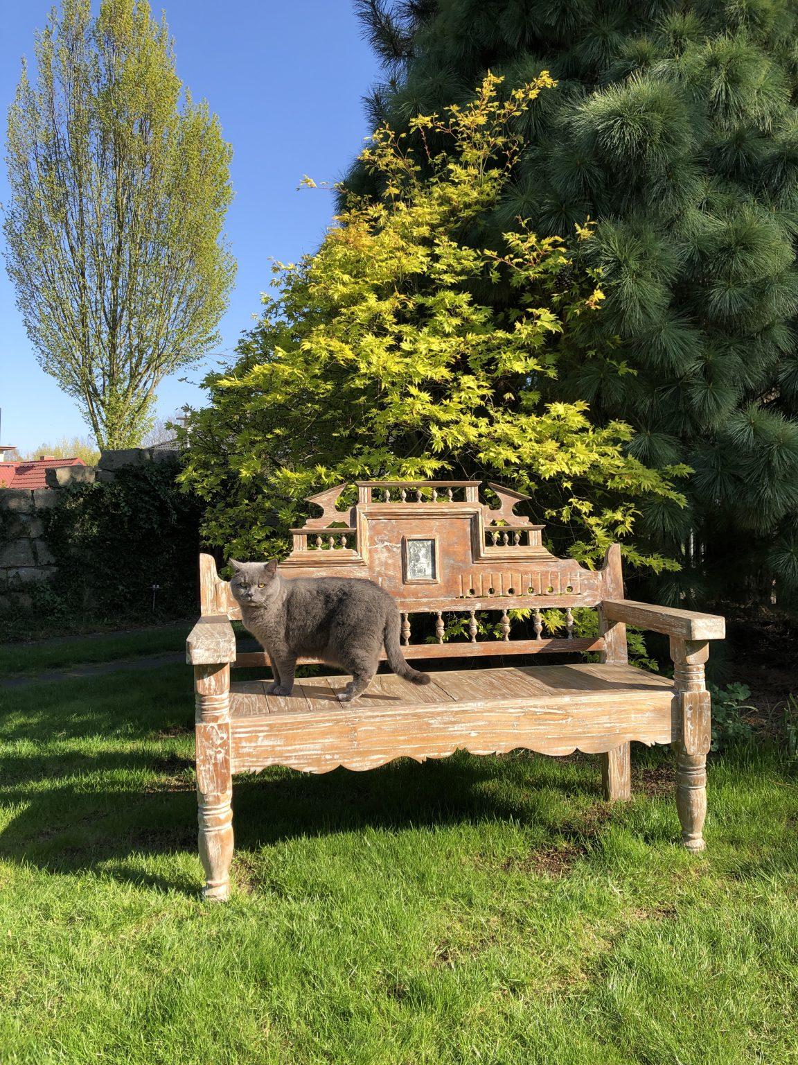 Kundenbild Dari Asia antike Bank im Garten